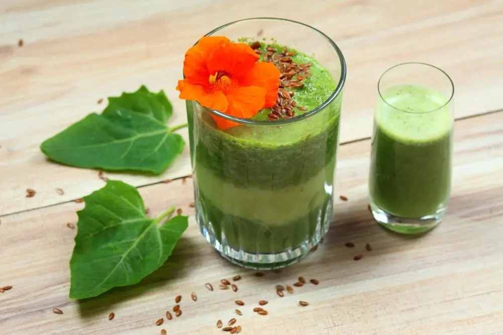 Image of smoothie with nasturtium flower and leaves.