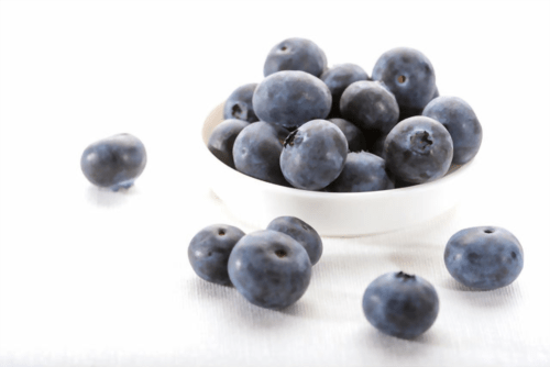 Blueberries Featured