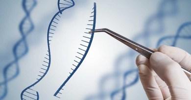 जीन थेरेपी से थैलेसीमिया से पीड़ित लोगों का इलाज संभव
