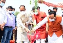 मुख्यमंत्री श्री चौहान ने रोपा बरगद का पौधा