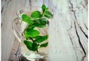 Why Is It Necessary To Know Various Health Related Benefits Of Mint Leaves?