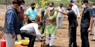 मुख्यमंत्री श्री चौहान ने लगाया अशोक का पौधा