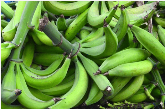 Health Benefits of Unripe plantains