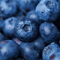 Blueberries Reduce Blood Pressure & Arterial Stiffness, Research Finds