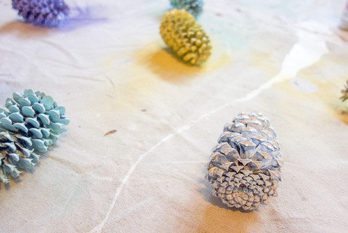 Pinecones are great to use as decor. This easy tutorial for how to spray paint pinecones will help you create a unique display for your home.