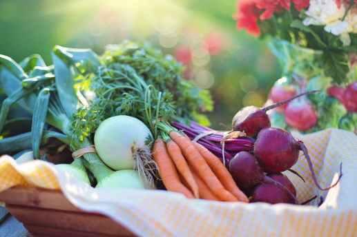 Benefits of Healthy Food