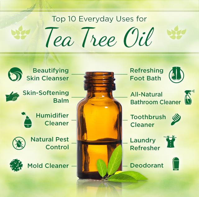 Top 15 Uses Of Tea Tree Oil Health Benefits Of Tea Tree Oil