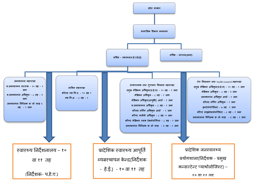Hierarchy of Public health in government levels of nepal