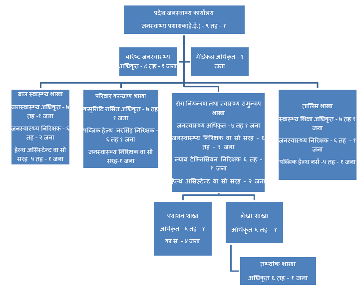 Structure of Provincial Public Health Office