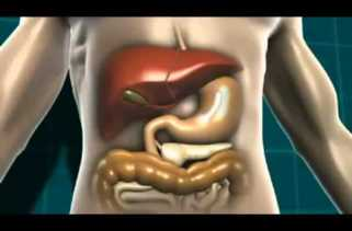 Diabetes - Causes, Symptoms, Diagnosis and Treatment