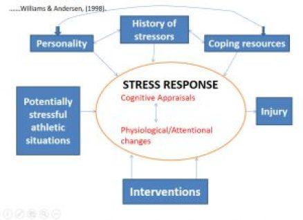 Stress-Injury Model