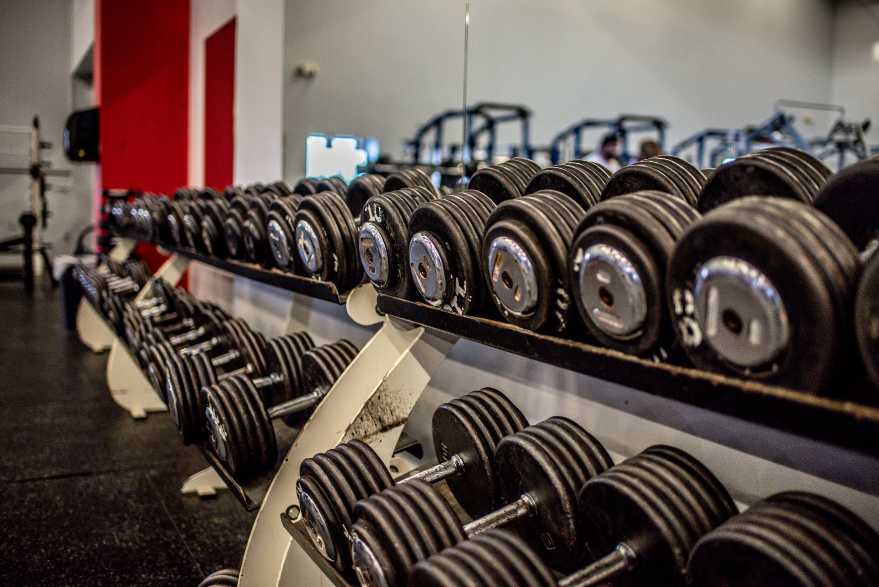 Healthplex Fitness Clifton Park NY Free Weights and Strength