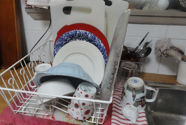 The tray dish washing stand is no less than an aid for microbes