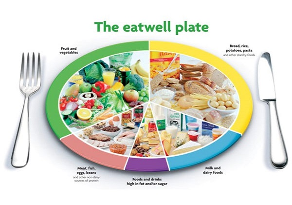 Maintain a well balanced diet image