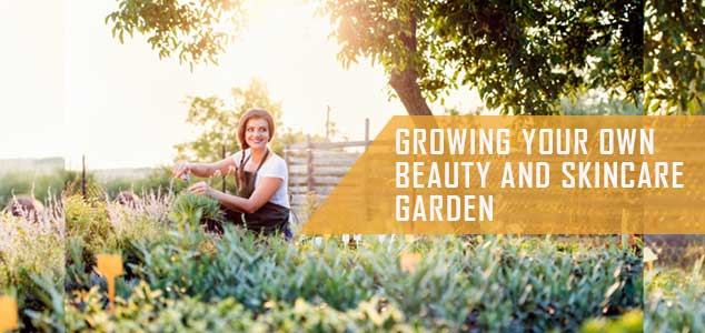 beauty-and-skincare-garden-guide