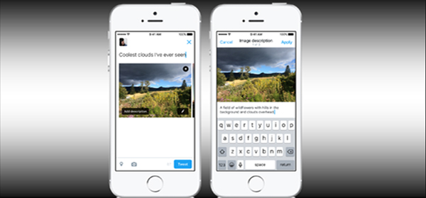 Twitter Adds Smartphone Image Accessibility for the Blind