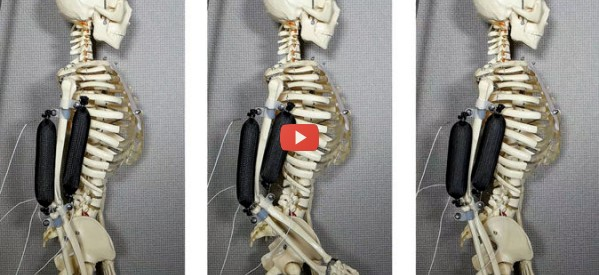 Soft Artificial Muscle Is 3D Printed [video]