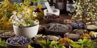 Naturopaths Naturopathy