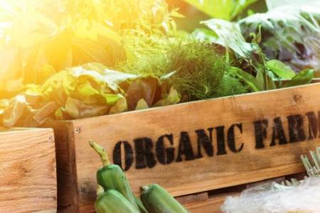 Harmful Compounds in Our Food, Go Organic