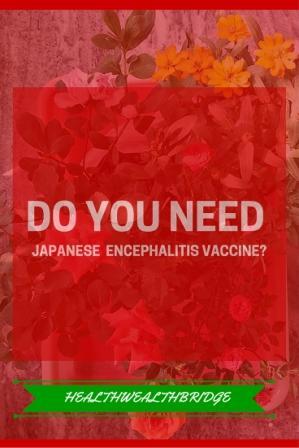 DO YOU NEED japanese encephalitis vaccine