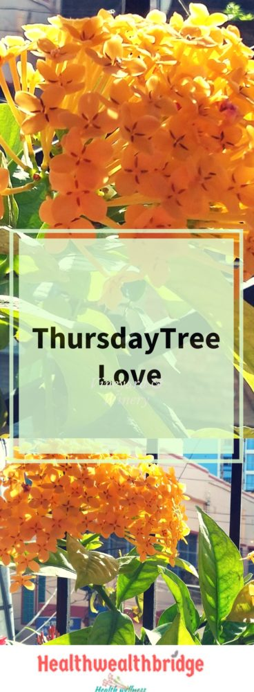 THursday Tree love is stuck in my brain for some time :Finally able to do it.