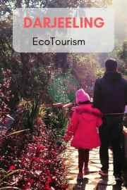How to Enjoy  Ecotourism At Darjeeling on a budget:Chota Mangwa(Blossom's Ecotourism)