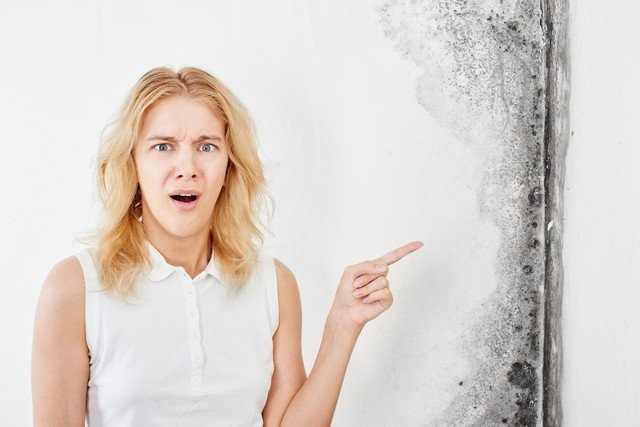 The Hidden Dangers Of Black Mold! - Stachybotrys Chartarum is the official name for what most people refer to as toxic black mold. Healthy Air USA are black mold experts serving the Atlanta, Georgia area. Call our experts, 770-205-1710, so that we can explain what black mold is, why it grows, and the potential health consequences of exposure.
