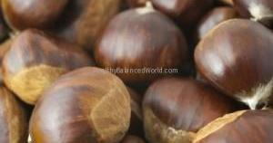 ID-10023114 - Chestnuts by m_bartosch at www.freedigitalphotos.net