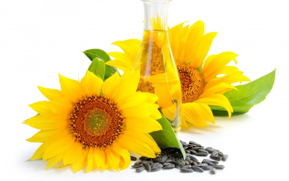 Sunflower Seed Oil‏