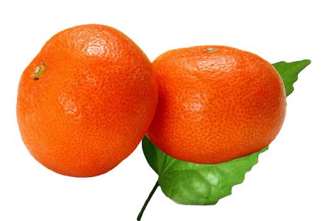mandarin Fruit