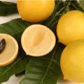 Bacupari Fruit