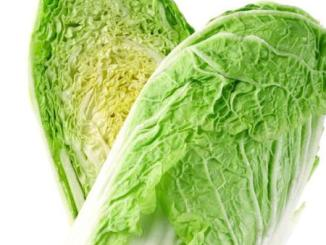 Napa Cabbage Vegetable
