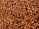 teff-grain