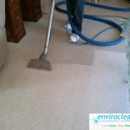Carpet Cleaning South Elgin IL