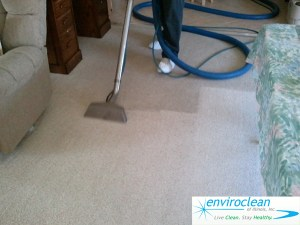 Carpet Cleaning South Elgin, IL