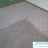 Elgin Illinois Carpet Cleaner