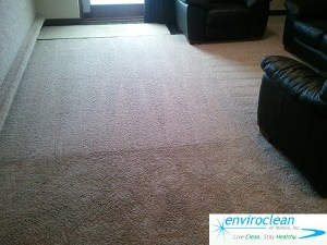 Barrington IL Carpet Cleaning