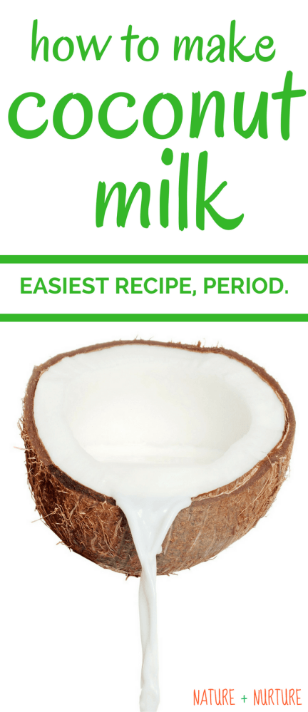 How to Make Homemade Coconut Milk (5 Minute, Super Simple Tutorial)