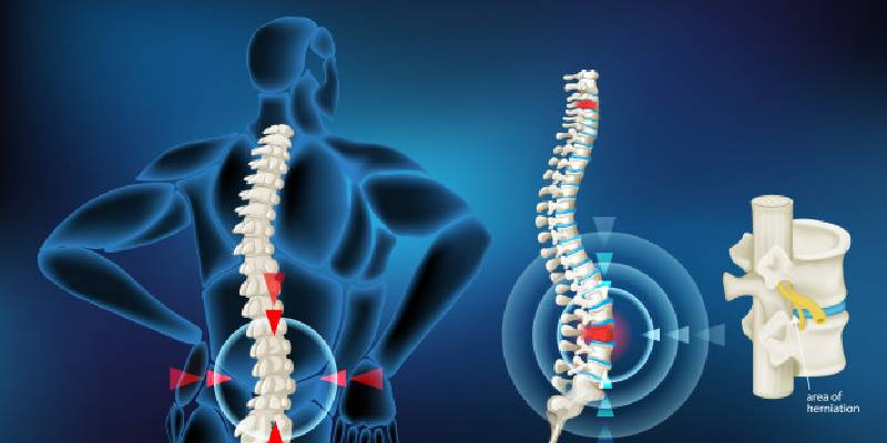 weakest bone in the human body