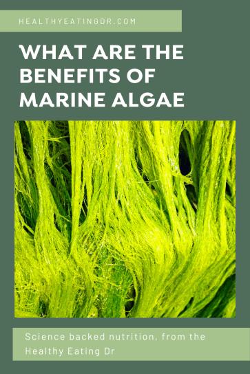 what are the benefits of marine algae