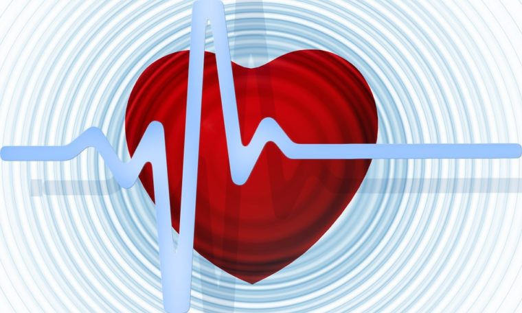 How To Prevent Heart Diseases (Keeping your heart healthy)