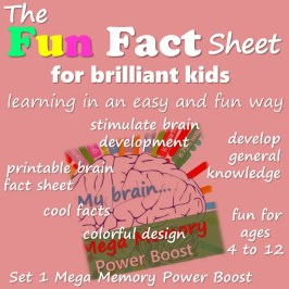 fun fact sheet for brilliant kids. top learning styles. Fun and easy learning #funfactsheet #kidslearning #learningstyles