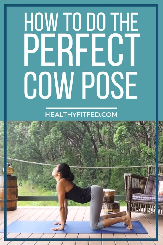 How to do a perfect cow pose. Used in combo with the cat for the famous cat-cow position.