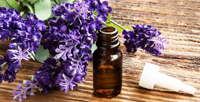 lavender essential oil benefits