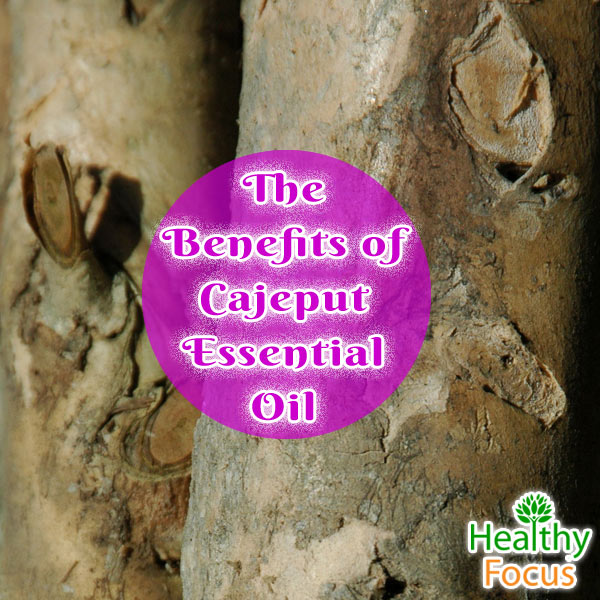 mig-The-Benefits-of-Cajeput-Essential-Oil