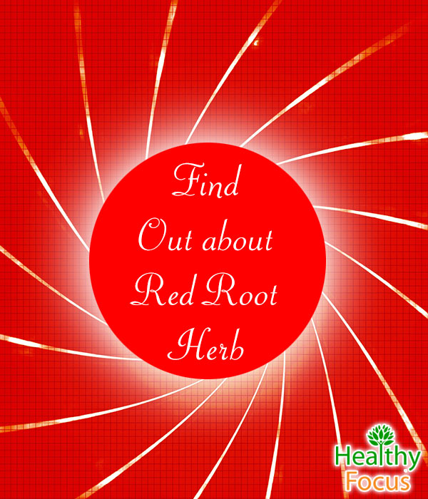 mig-Find--Out-Red-Root--Herb