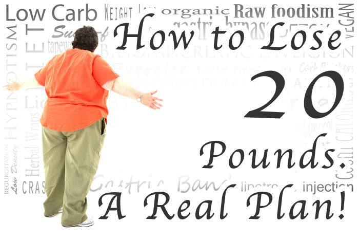 hdr-How-to-Lose-20-Pounds-A-Real-Plan2