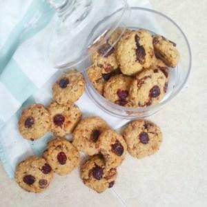 cranberrie koekjes (2)