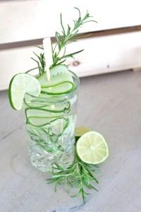 Alcoholvrije gin tonic 1