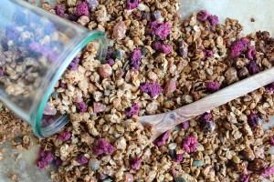 geroosterde noten granola